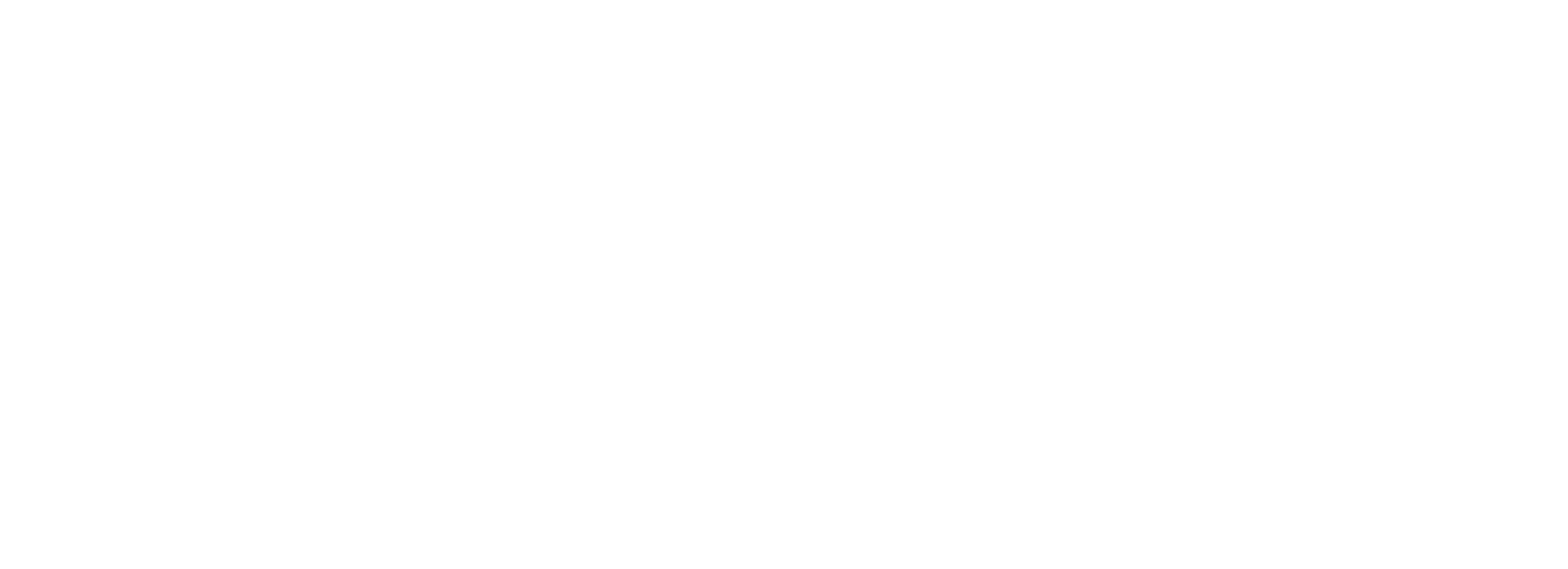Logo -Full-White